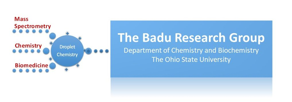 The Badu Research Group