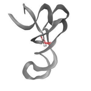 m1G9-tRNA