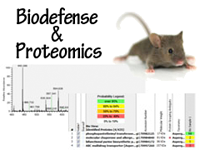 Click to view a list of projects about proteomics
